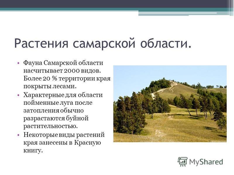 Растения самарской области. Фауна Самарской области насчитывает 2000 видов. Более 20 % территории края покрыты лесами. Характерные для области пойменные луга после затопления обычно разрастаются буйной растительностью. Некоторые виды растений края за