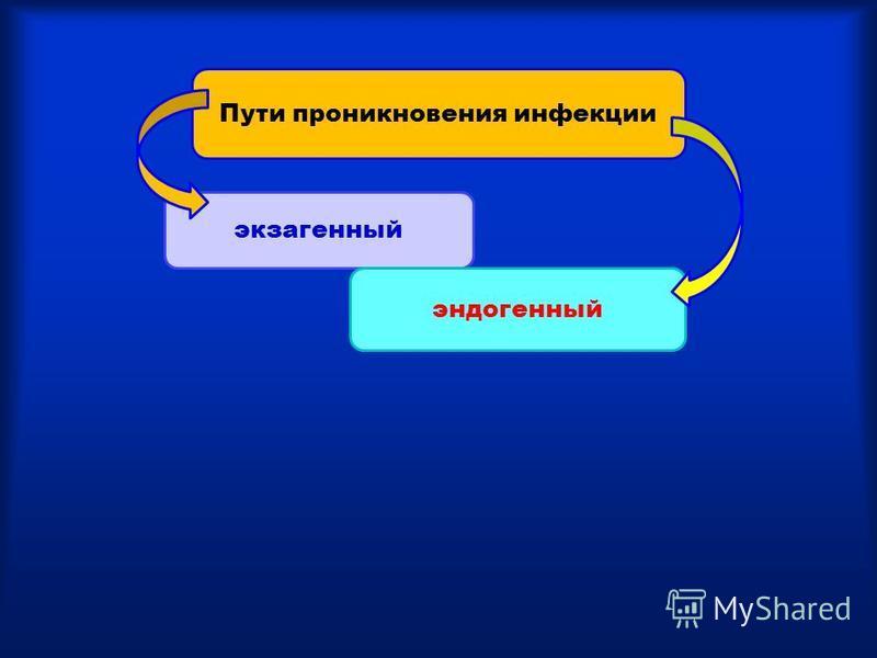 экзогенный эндогенный Пути проникновения инфекции