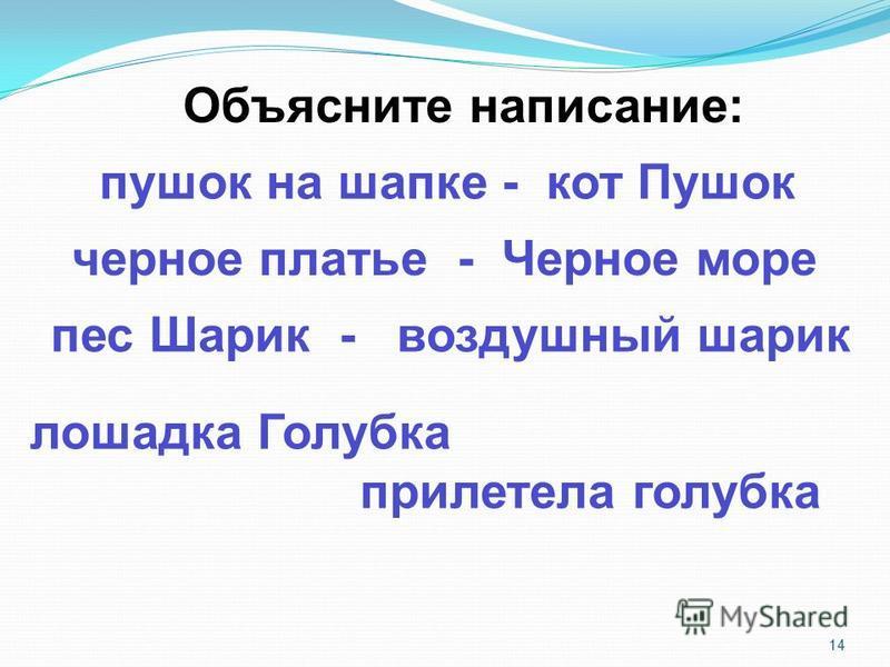 14 Объясните написание: пушок на шапке - кот Пушок черное платье - Черное море пес Шарик - воздушный шарик лошадка Голубка прилетела голубка