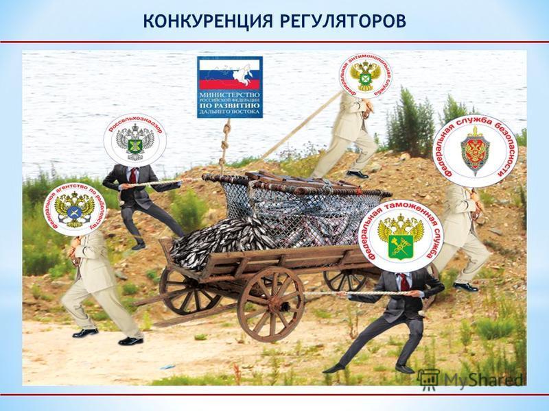 КОНКУРЕНЦИЯ РЕГУЛЯТОРОВ