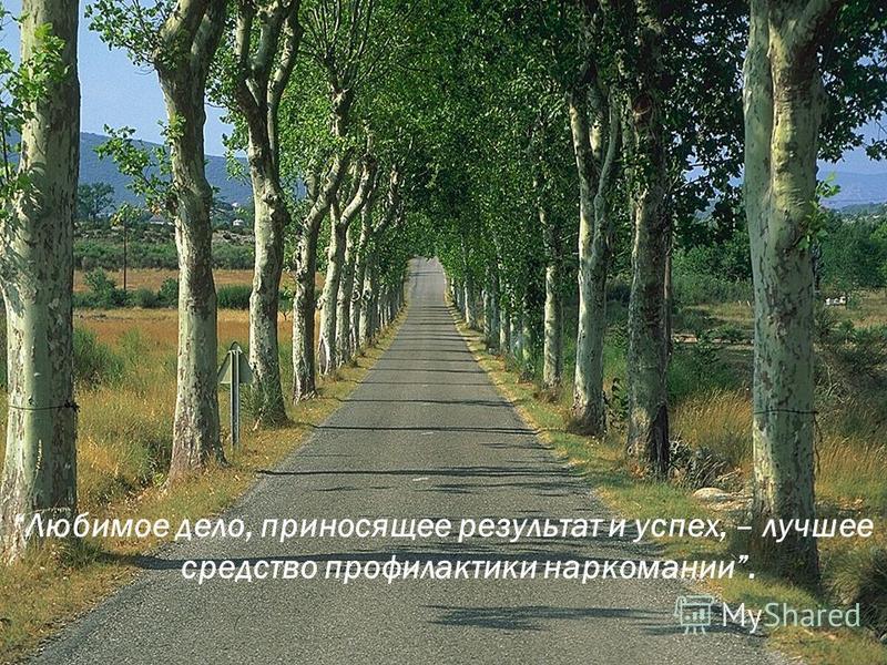 Фильм 2 Фильм 2 «ВЫБОР»