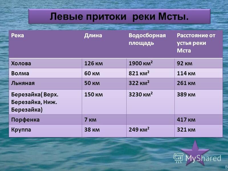 Левые притоки реки Мсты.