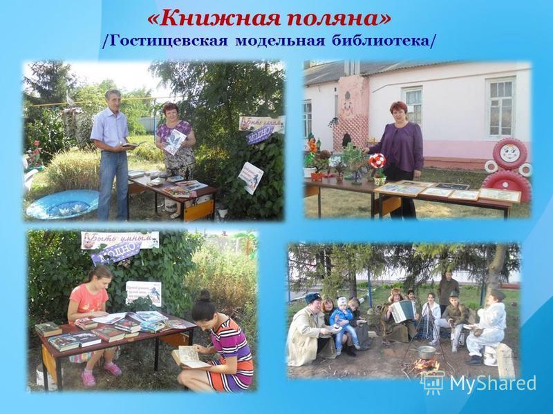 «Книжная поляна» /Гостищевская модельная библиотека/