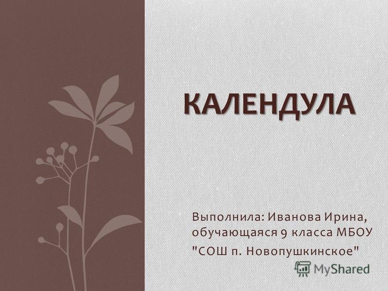 Выполнила: Иванова Ирина, обучающаяся 9 класса МБОУ СОШ п. Новопушкинское КАЛЕНДУЛА
