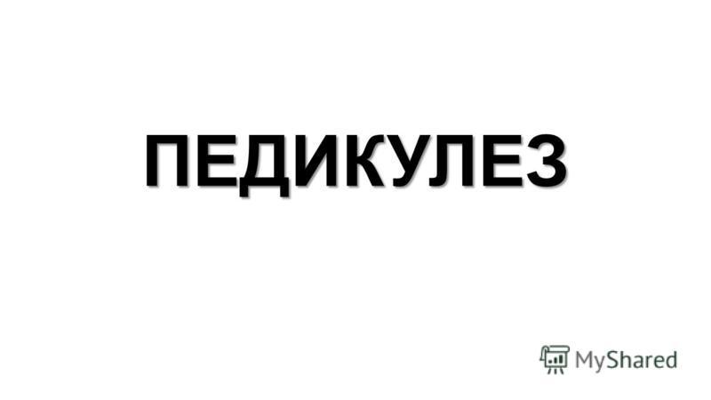 ПЕДИКУЛЕЗ