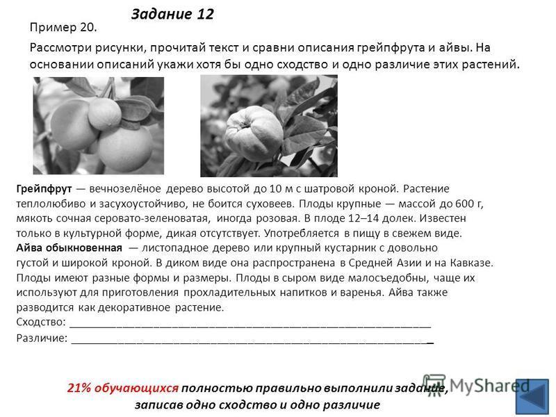 Задание 12 Пример 20. Рассмотри рисунки, прочитай текст и сравни описания грейпфрута и айвы. На основании описаний укажи хотя бы одно сходство и одно различие этих растений. Грейпфрут вечнозелёное дерево высотой до 10 м с шатровой кроной. Растение те