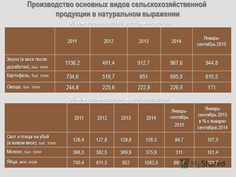 Производство основных видов сельскохозяйственной продукции в натуральном выражении 2011201220132014 Январь- сентябрь 2015 Зерно (в весе после доработки), тыс. тонн 1136,2491,4912,7967,6944,8 Картофель, тыс. тонн 734,6519,7651685,9615,5 Овощи, тыс. то