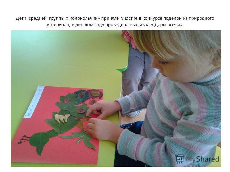 Дети средней группы « Колокольчик» приняли участие в конкурсе поделок из природного материала, в детском саду проведена выставка « Дары осени».