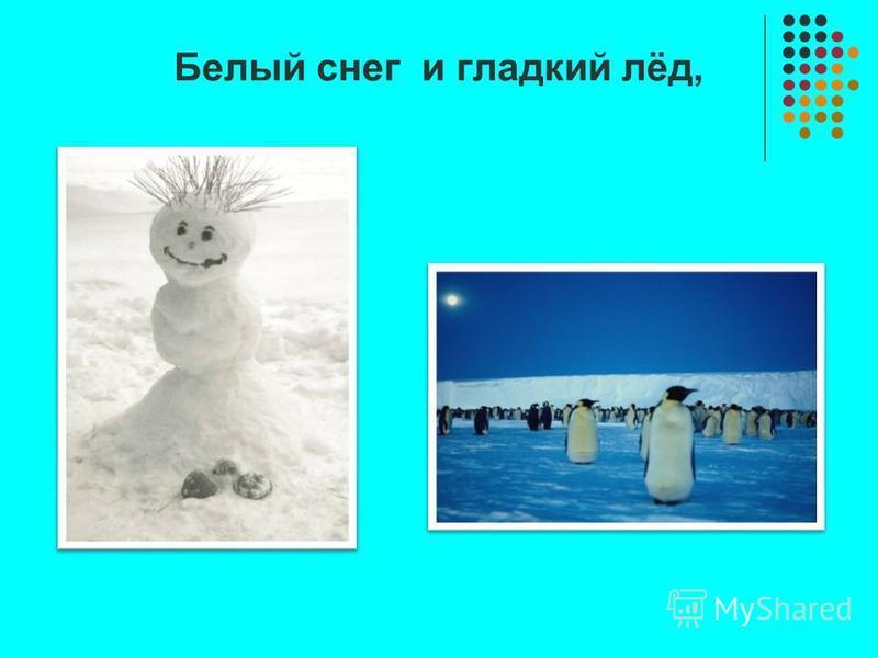 Белый снег и гладкий лёд,
