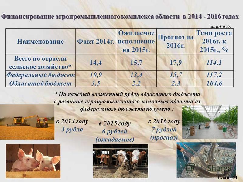 Финансирование агропромышленного комплекса области в 2014 - 2016 годах Наименование Факт 2014 г. Ожидаемое исполнение на 2015 г. Прогноз на 2016 г. Темп роста 2016 г. к 2015 г., % Всего по отрасли сельское хозяйство* 14,415,717,9114,1 Федеральный бюд