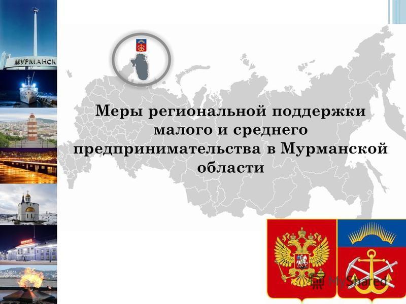 Меры региональной поддержки малого и среднего предпринимательства в Мурманской области
