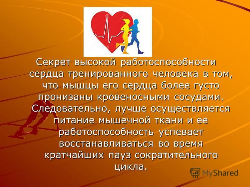 Секрет высокой работоспособности сердца тренированного человека в том, что мышцы его сердца более густо пронизаны кровеносными сосудами. Следовательно, лучше осуществляется питание мышечной ткани и ее работоспособность успевает восстанавливаться во в