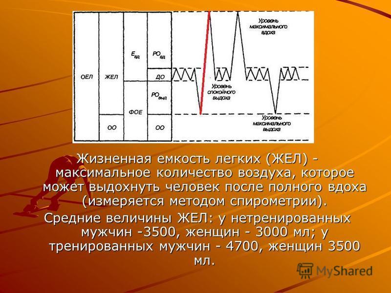 Жизненная емкость легких (ЖЕЛ) - максимальное количество воздуха, которое может выдохнуть человек после полного вдоха (измеряется методом спирометрии). Средние величины ЖЕЛ: у нетренированных мужчин -3500, женщин - 3000 мл; у тренированных мужчин - 4