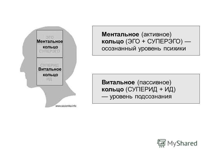 Ментальное (активное) кольцо (ЭГО + СУПЕРЭГО) осознанный уровень психики Витальное (пассивное) кольцо (СУПЕРИД + ИД) уровень подсознания