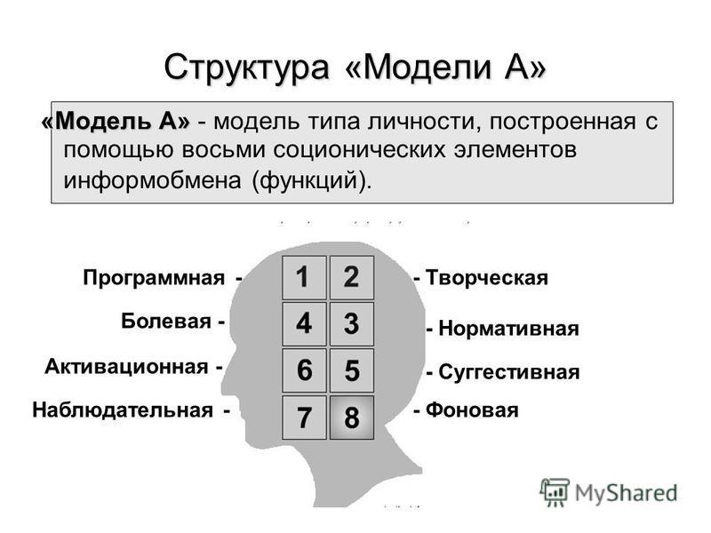 Структура «Модели А» «Модель А» «Модель А» - модель типа личности, построенная с помощью восьми соционических элементов информ обмена (функций). Программная-- Творческая - Нормативная Болевая - - Суггестивная - Фоновая Активационная - Наблюдательная
