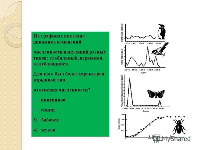 На графиках показана динамика изменений численности популяций разных типов: стабильный, взрывной, колеблющийся Для кого был более характерен взрывной тип изменения численности? 1) пингвинов 2) синиц 3) бабочек 4) жуков