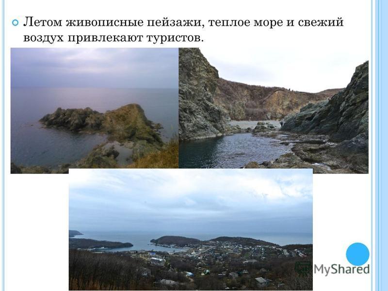 Летом живописные пейзажи, теплое море и свежий воздух привлекают туристов.