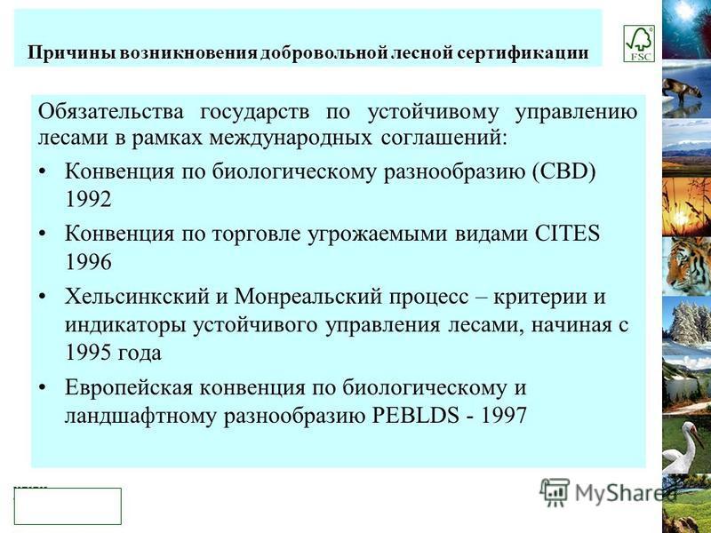 Обязательства государств по устойчивому управлению лесами в рамках международных соглашений: Конвенция по биологическому разнообразию (CBD) 1992 Конвенция по торговле угрожаемыми видами CITES 1996 Хельсинкский и Монреальский процесс – критерии и инди