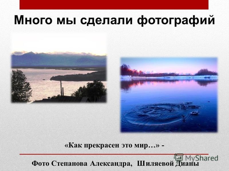 «Как прекрасен это мир…» - Фото Степанова Александра, Шиляевой Дианы Много мы сделали фотографий
