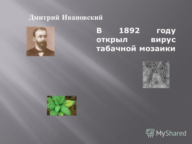 Дмитрий Ивановский В 1892 году открыл вирус табачной мозаики