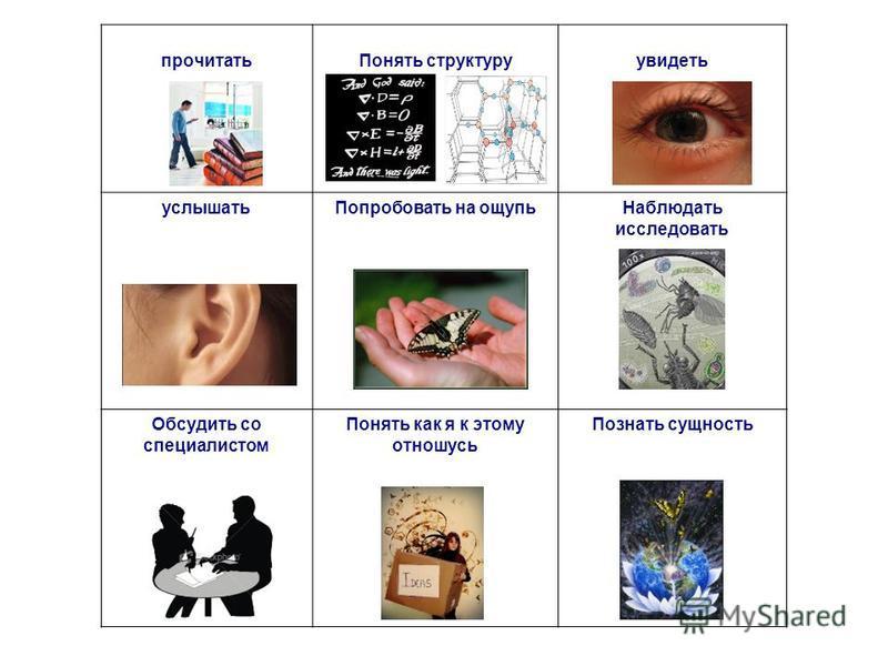 прочитать Понять структуруувидеть услышать Попробовать на ощупь Наблюдать исследовать Обсудить со специалистом Понять как я к этому отношусь Познать сущность