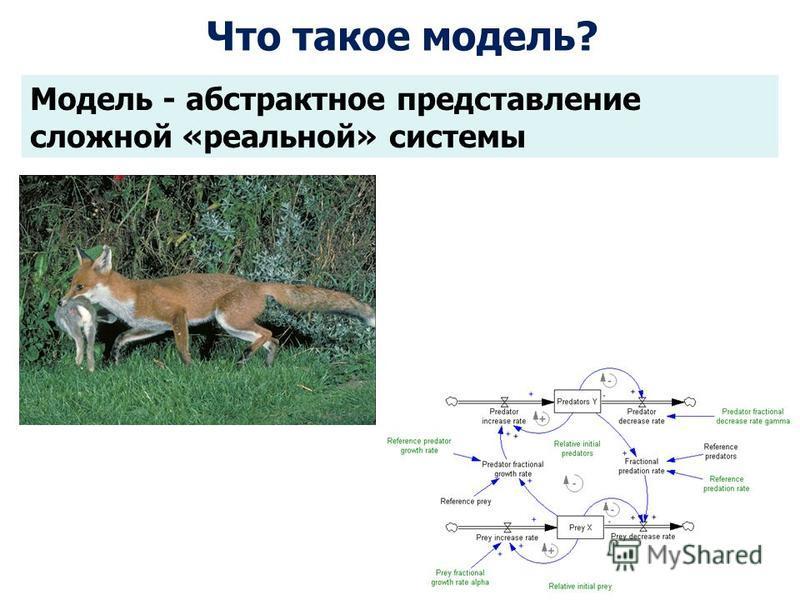 Модель - абстрактное представлениже сложной «реальной» системы Что такое модель?