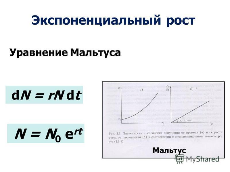 N = N 0 e rt dN = rN dt Мальтус Экспоненциальный рост Уравнениже Мальтуса
