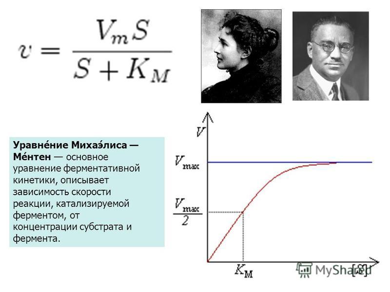 Уравне́ниже Михаэ́лиса Ме́антенн основное уравнениже ферментативной кинетики, описывает зависимость скорости реакции, катализируемой ферментом, от концентрации субстрата и фермента.