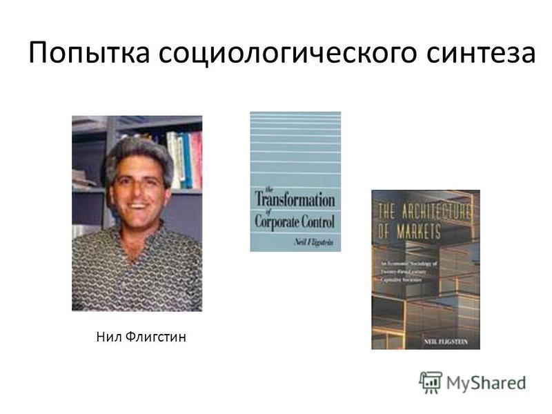 Попытка социологического синтеза Нил Флигстин