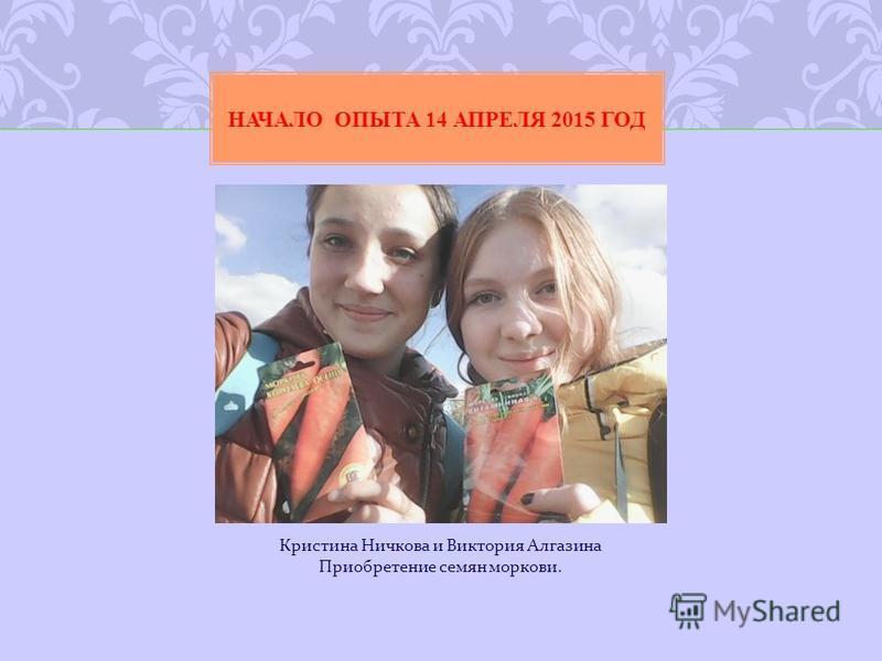 Кристина Ничкова и Виктория Алгазина Приобретение семян моркови. НАЧАЛО ОПЫТА 14 АПРЕЛЯ 2015 ГОД