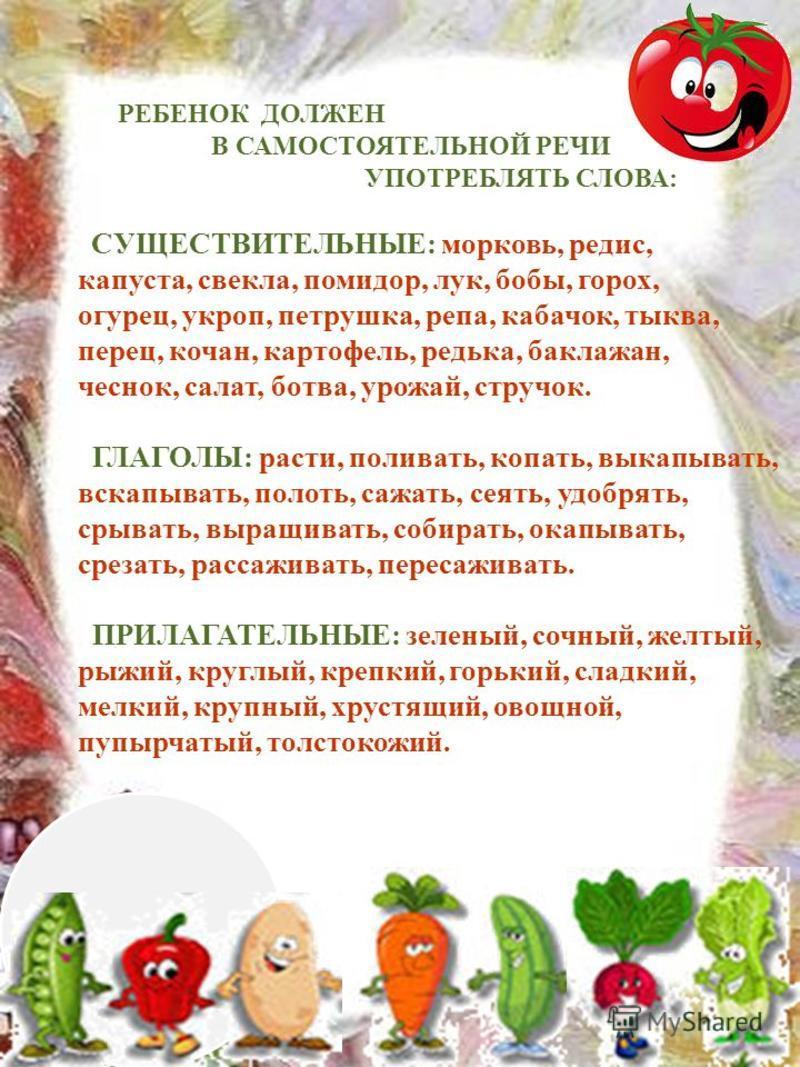 РЕБЕНОК ДОЛЖЕН В САМОСТОЯТЕЛЬНОЙ РЕЧИ УПОТРЕБЛЯТЬ СЛОВА: СУЩЕСТВИТЕЛЬНЫЕ: морковь, редис, капуста, свекла, помидор, лук, бобы, горох, огурец, укроп, петрушка, репа, кабачок, тыква, перец, кочан, картофель, редька, баклажан, чеснок, салат, ботва, урож