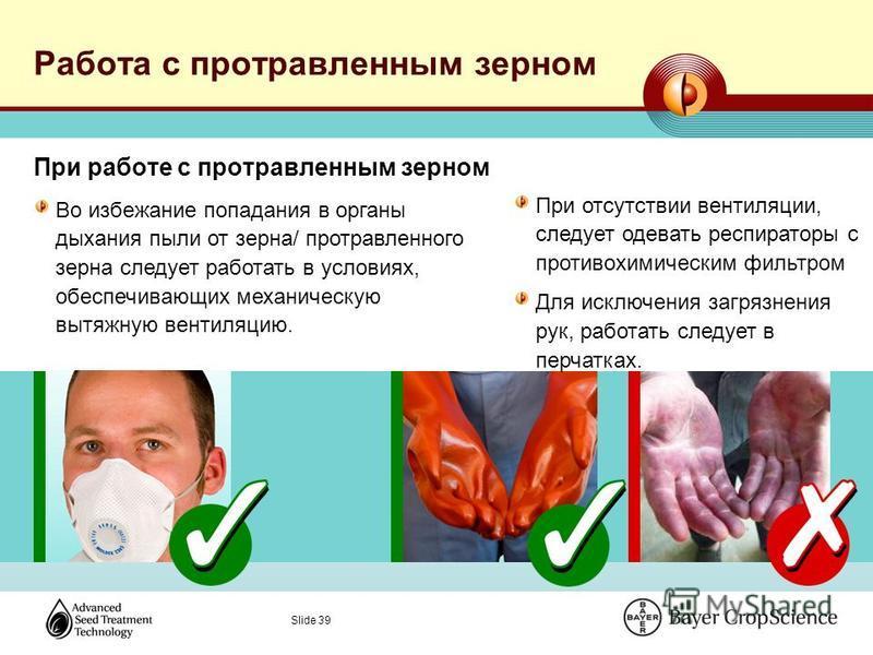 Slide 39 Работа с протравленным зерном При работе с протравленным зерном Во избежание попадания в органы дыхания пыли от зерна/ протравленного зерна следует работать в условиях, обеспечивающих механическую вытяжную вентиляцию. При отсутствии вентиляц