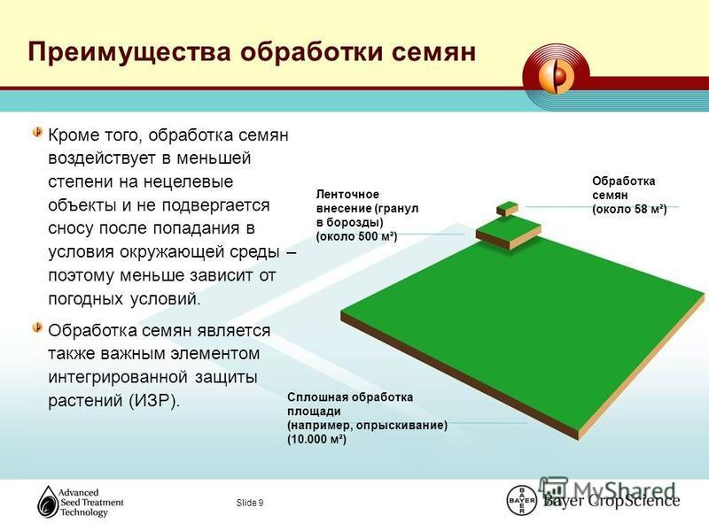 Slide 9 Преимущества обработки семян Обработка семян (около 58 м²) Ленточное внесение (гранул в борозды) (около 500 м²) Сплошная обработка площади (например, опрыскивание) (10.000 м²) Кроме того, обработка семян воздействует в меньшей степени на неце