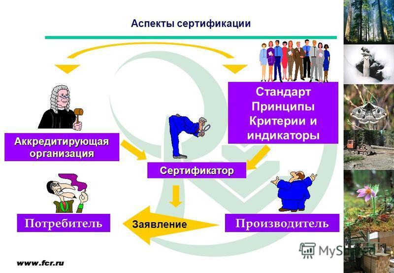 Аспекты сертификации Аккредитирующая организация Сертификатор Производитель Потребитель Стандарт Принципы Критерии и индикаторы Заявление
