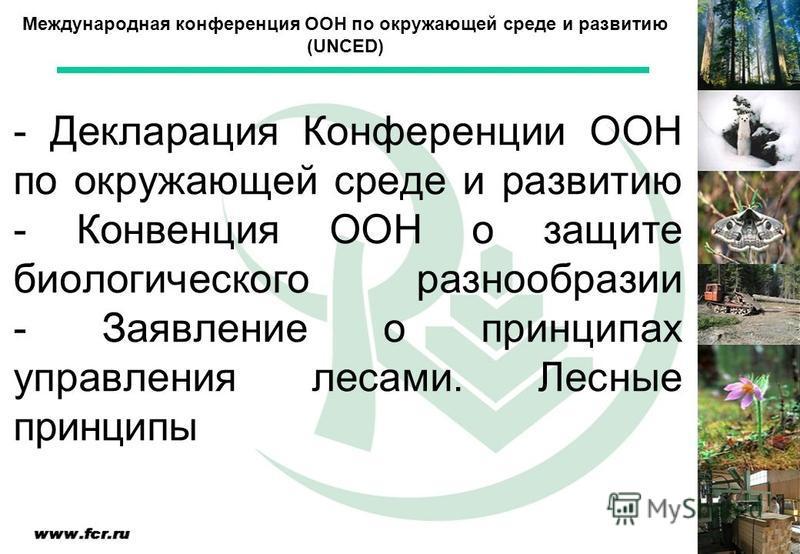 - Декларация Конференции ООН по окружающей среде и развитию - Конвенция ООН о защите биологического разнообразии - Заявление о принципах управления лесами. Лесные принципы Международная конференция ООН по окружающей среде и развитию (UNCED)