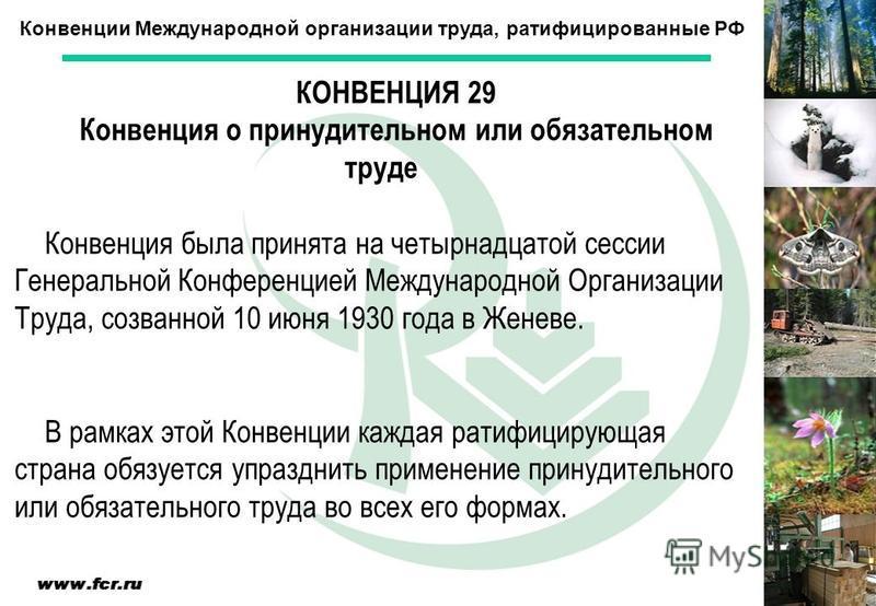 Конвенции Международной организации труда, ратифицированные РФ КОНВЕНЦИЯ 29 Конвенция о принудительном или обязательном труде Конвенция была принята на четырнадцатой сессии Генеральной Конференцией Международной Организации Труда, созванной 10 июня 1