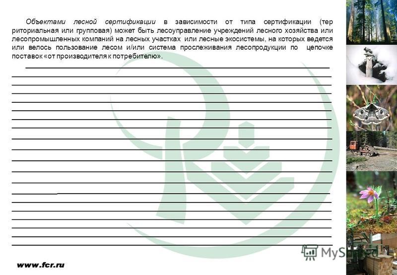 Объектами лесной сертификации в зависимости от типа сертификации (тер риториальная или групповая) может быть лесоуправление учреждений лесного хозяйства или лесопромышленных компаний на лесных участках или лесные экосистемы, на которых ведется или ве