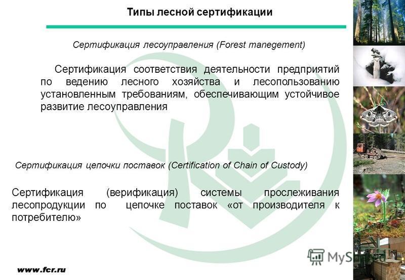 Сертификация соответствия деятельности предприятий по ведению лесного хозяйства и лесопользованию установленным требованиям, обеспечивающим устойчивое развитие лесоуправления Типы лесной сертификации Сертификация лесоуправления (Forest manegement) Се