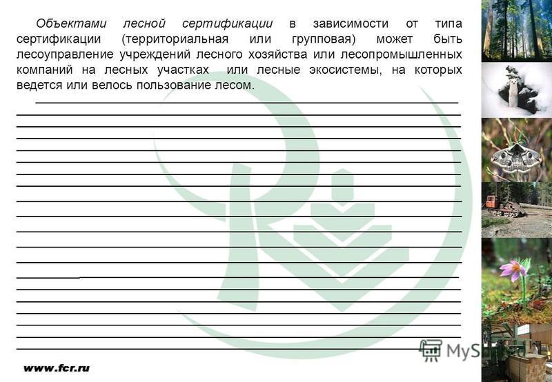 Объектами лесной сертификации в зависимости от типа сертификации (территориальная или групповая) может быть лесоуправление учреждений лесного хозяйства или лесопромышленных компаний на лесных участках или лесные экосистемы, на которых ведется или вел