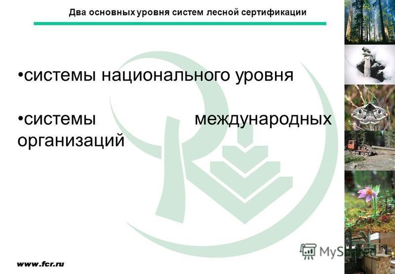 системы национального уровня системы международных организаций Два основных уровня систем лесной сертификации