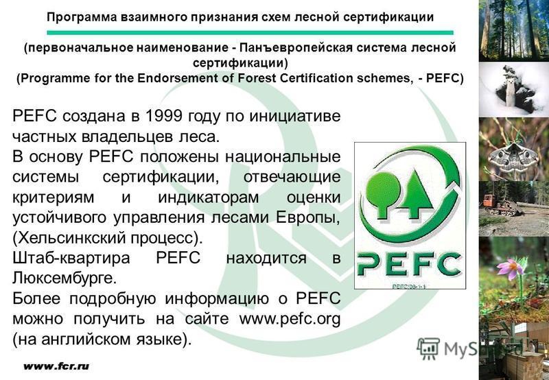 PEFC создана в 1999 году по инициативе частных владельцев леса. В основу PEFC положены национальные системы сертификации, отвечающие критериям и индикаторам оценки устойчивого управления лесами Европы, (Хельсинкский процесс). Штаб-квартира PEFC наход