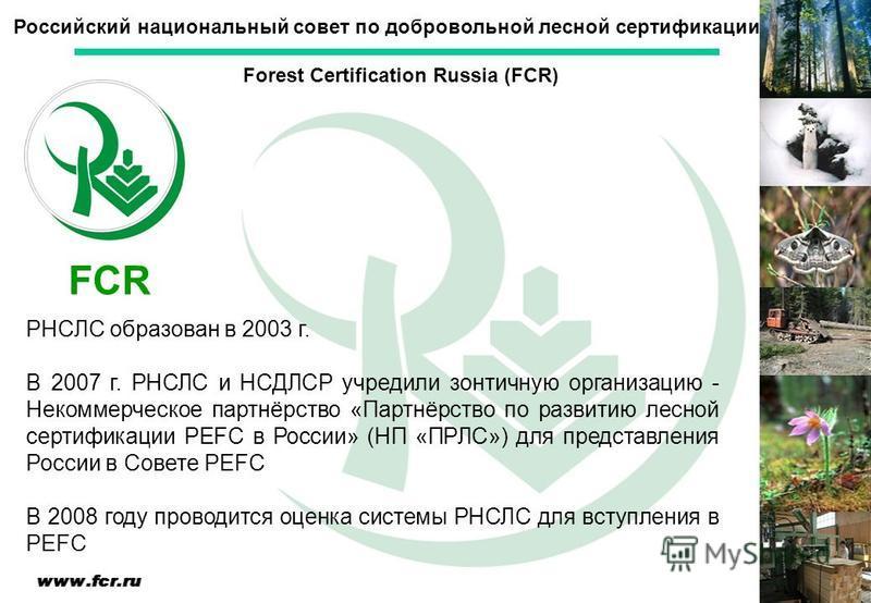 РНСЛС образован в 2003 г. В 2007 г. РНСЛС и НСДЛСР учредили зонтичную организацию - Некоммерческое партнёрство «Партнёрство по развитию лесной сертификации PEFC в России» (НП «ПРЛС») для представления России в Совете PEFC В 2008 году проводится оценк