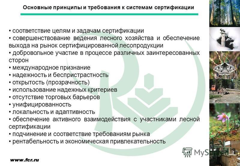 соответствие целям и задачам сертификации совершенствование ведения лесного хозяйства и обеспечение выхода на рынок сертифицированной лесопродукции добровольное участие в процессе различных заинтересованных сторон международное признание надежность и