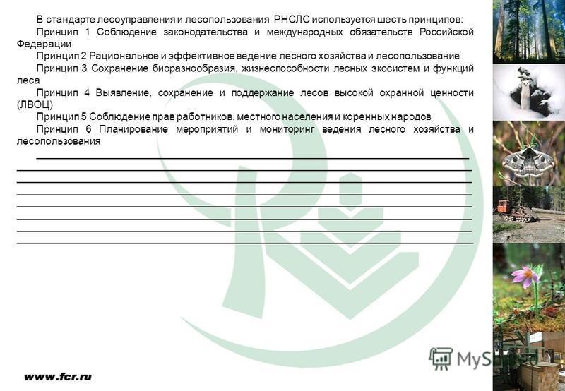 В стандарте лесоуправления и лесопользования РНСЛС используется шесть принципов: Принцип 1 Соблюдение законодательства и международных обязательств Российской Федерации Принцип 2 Рациональное и эффективное ведение лесного хозяйства и лесопользование
