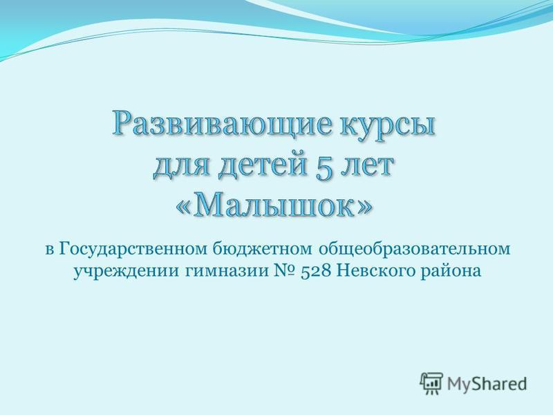 в Государственном бюджетном общеобразовательном учреждении гимназии 528 Невского района