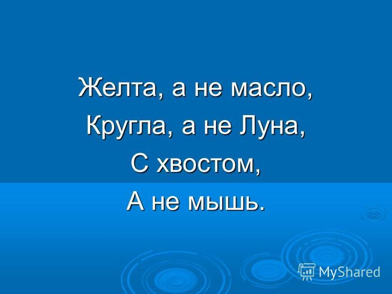 Желта, а не масло, Кругла, а не Луна, С хвостом, А не мышь.