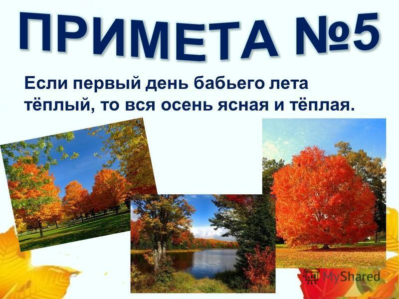 Если первый день бабьего лета тёплый, то вся осень ясная и тёплая.