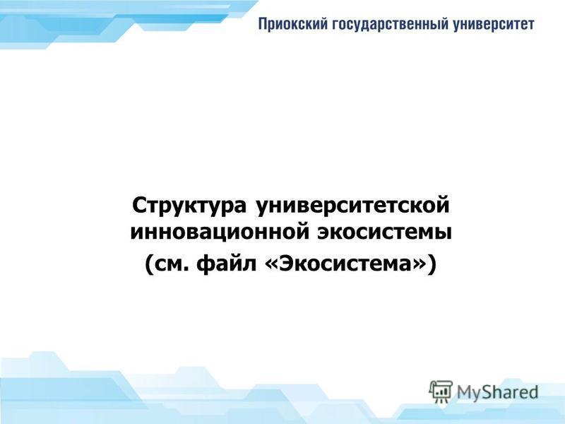 Структура университетской инновационной экосистемы (см. файл «Экосистема»)