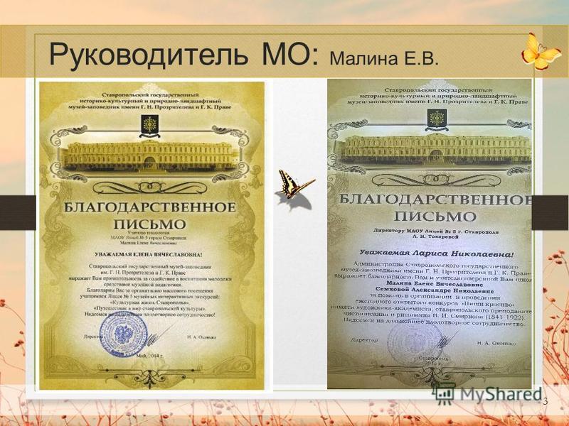 3 Руководитель МО: Малина Е.В. Текст слайда