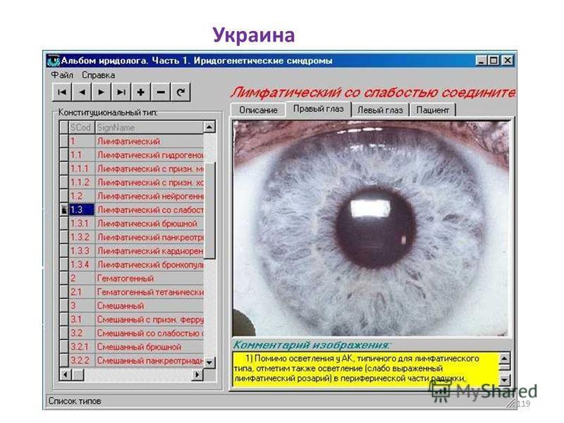 Украина 119